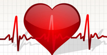 What is Normal Heart Rate
