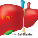 liver diseases can occur for variety of reasons